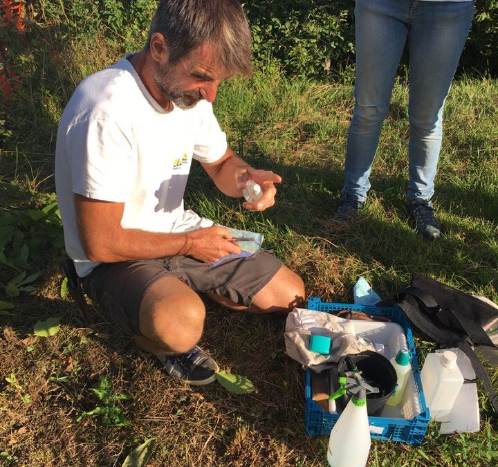 15 août 2020 | Greffage en compagnie de bénévoles et de Gilles Villanova, professeur d'arboriculture
